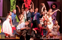 Musicals, Recitals and Plays