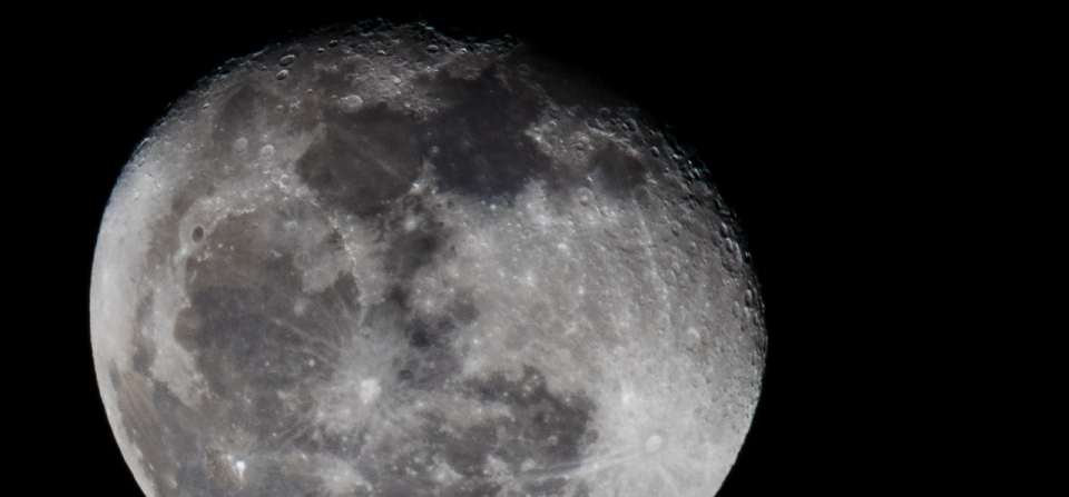 January 2014 – Moon and Guests