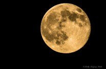 July 2014 Supermoon